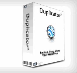 copia-seguridad-plugin-duplicator-16