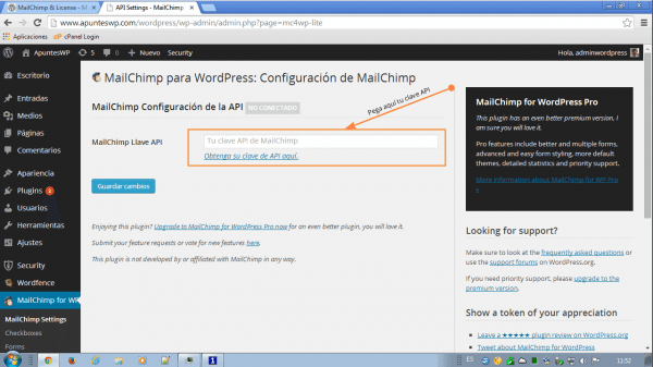MailChimp for WordPress (1) Configuracion de la API