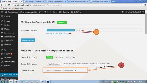 MailChimp for WordPress. Configuración de la licencia en la versión Pro