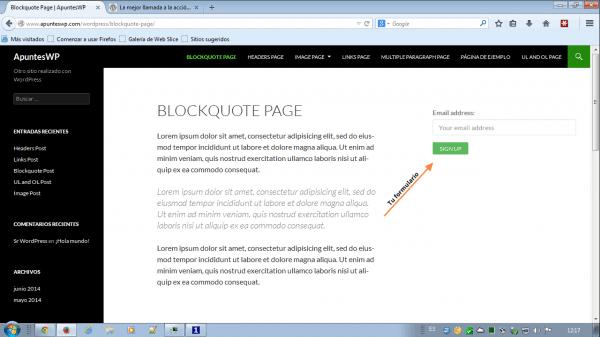 MailChimp for WordPress. Resultado de configurar el código corto en la barra lateral