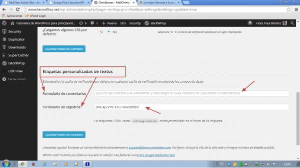 MailChimp for WordPress. Etiquetas personalizadas de textos para etiquetas