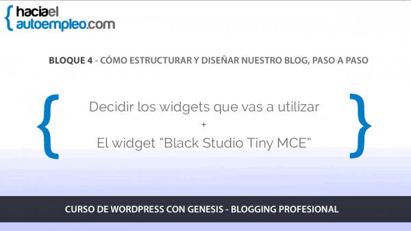 curso-wordpress-online-bloque-4-estructura-diseño-blog-widgets