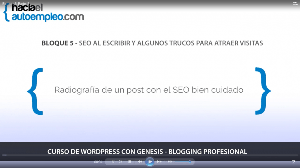 curso-wordpress-online-bloque-5-radiografica-post-seo