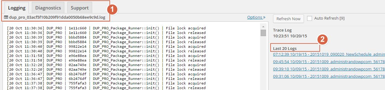 Duplicator Pro - Tools