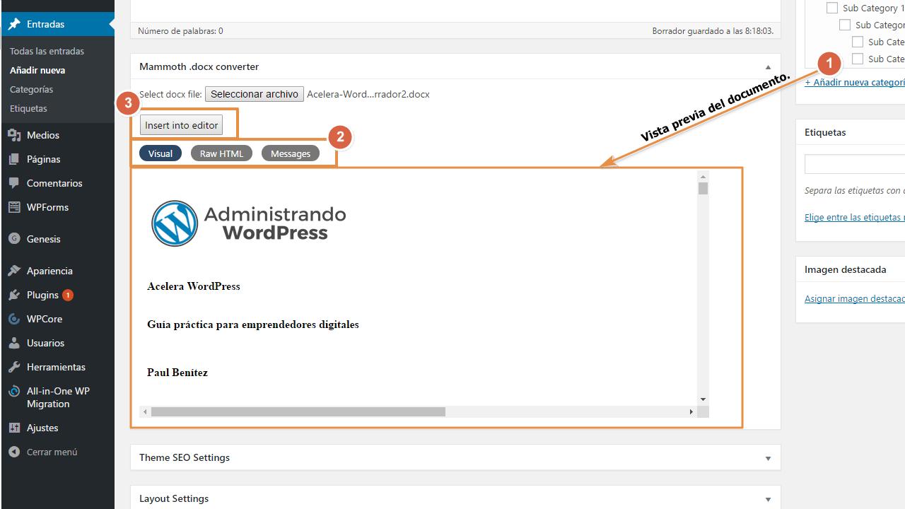 Opciones antes de insertar un Word con mammoth docx converter