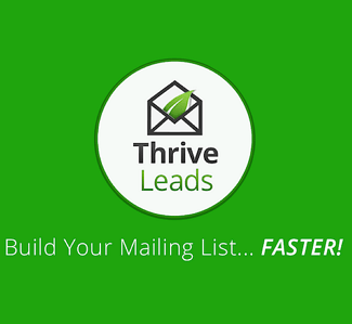 Thrive-Leads-325-300
