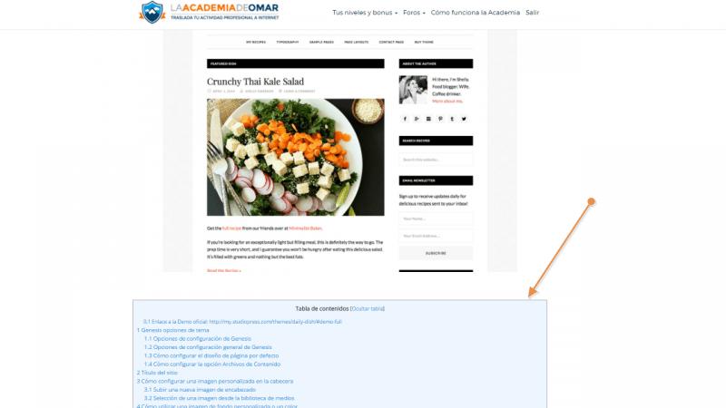 Caso práctico de uso de Table of Contents Plus. Cear un indice de contenidos de la documentación de un tema de WordPress
