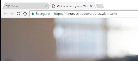 Detalle de la URL de instalación