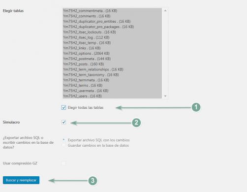 Opciones de configuración adicionales del plugin Seach & Replace.
