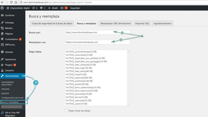 Opciones de configuración del plugin Seach & Replace.