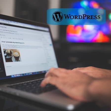 Controla, administra y domina tu WordPress como un PRO (Profesional)