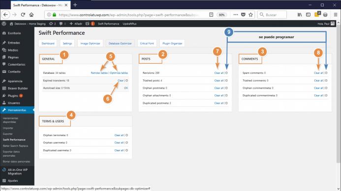 Detalles de la configuracion Database Optimizer de swift performance